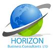 Horizon Business Consultants